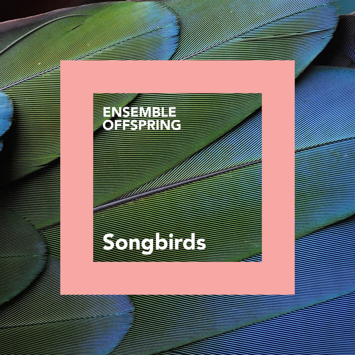 New CD from ABC Music: Songbirds featuring Daybreak